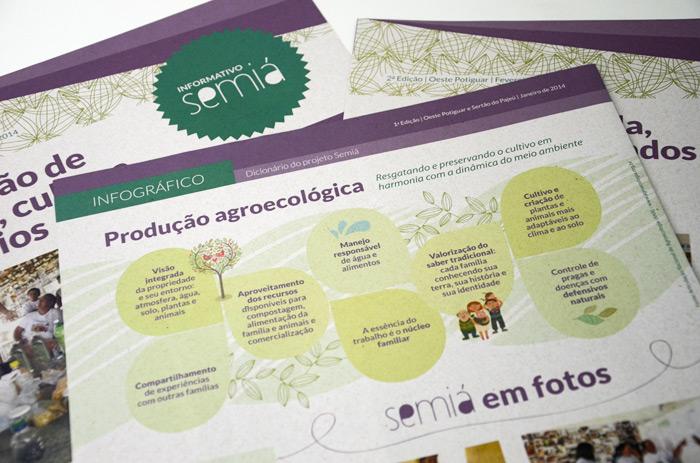 Infográfico sobre produção agroecológica